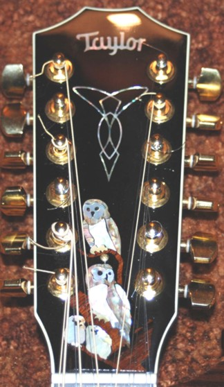 Taylor Owl Familiy Truss Rod Cover